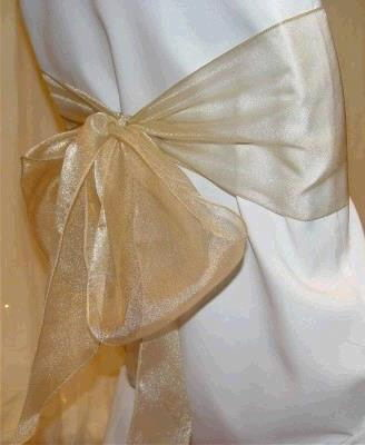 Where to find Organza Sash - Champagne in Surrey