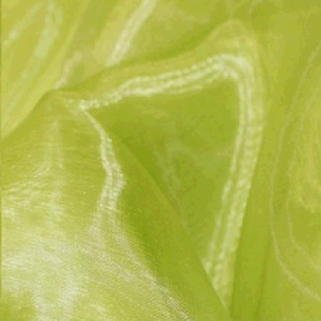 Where to find Organza Sash - Apple Green in Surrey
