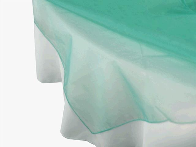 Where to find Overlay- Organza Turquoise in Surrey