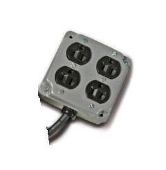 Where to find 4 Way Electrical Plug in Surrey